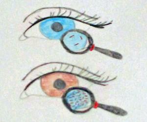AugenfarbeBild