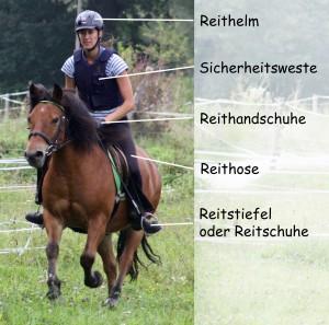 Die Ausrüstung eines Reiters.
